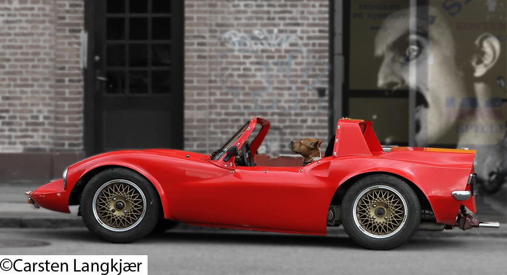 The beginning of Jaguar